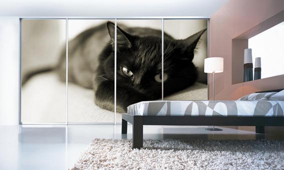 Фотопечать: кошка на стекле шкафа-купе